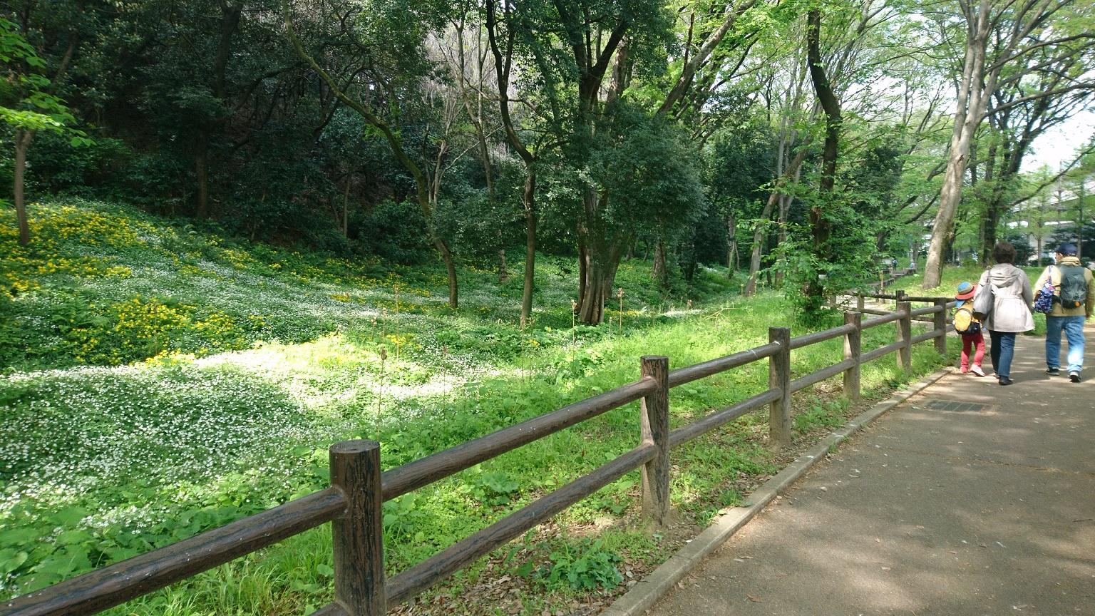 板橋区 高島平 自然